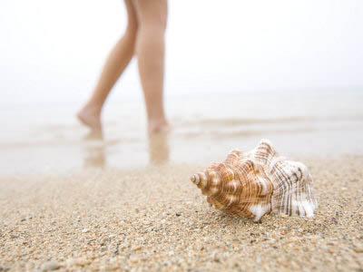 ноги, пляж, ракушка