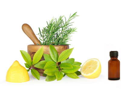 розмарин, лимон