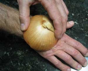 разрезанная луковица, приложенная к месту укуса осы