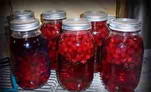 Настойка из ягод ежевики