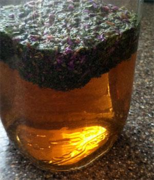 травяной лосьон