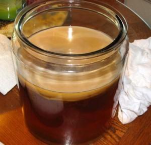 чайный гриб на поверхности напитка