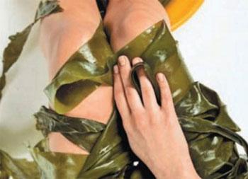 обертывания с водорослями