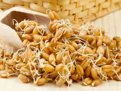 зерна с ростками