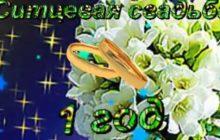 ситцевая свадьба