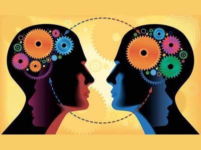 две головы, мозг
