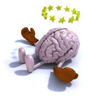 мозг лежит